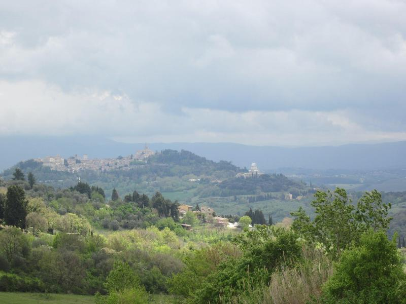View of the medieval town of Todi from the property premises - Palazzaccio Todi - Romantic stone house with views - Todi - rentals