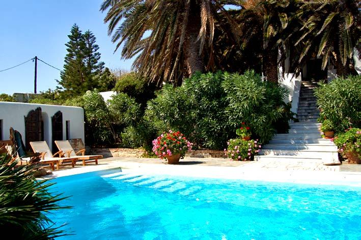 - The House of the Palm Trees - Mykonos - rentals