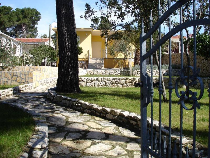 Two bedroom house by the sea - Image 1 - Petrcane - rentals
