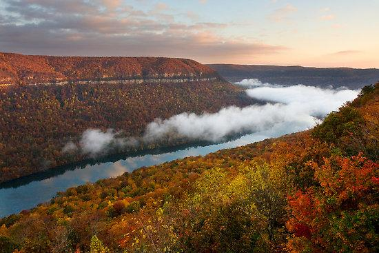 FALL COLOR - Tennessee River Gorge Island Cabin Chattanooga - Chattanooga - rentals