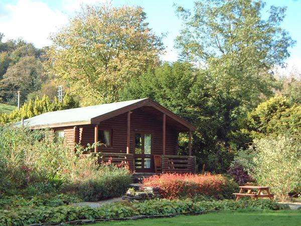 BUTTERMERE detached log cabin, shared grounds, close to Coniston in Greenodd Ref 30135 - Image 1 - Greenodd - rentals