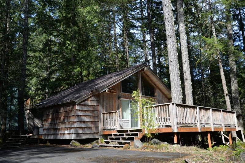 Pappy's Cabin - Image 1 - Brightwood - rentals
