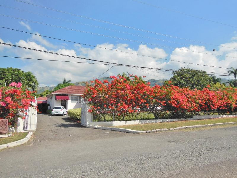 Kozy Korner Studio, Central, Peaceful and Scenic - Image 1 - Kingston - rentals