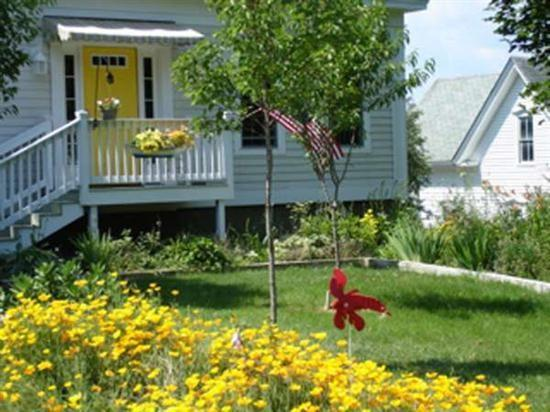 Summertime at Lowells Cove Cottage - Lowell`s Cove Cottage - Orrs Island - rentals