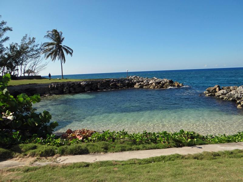 Private beach area - THE REAL THING - Jamaica - rentals