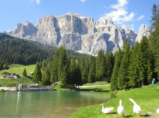 Sella Mount (surroundings) - ITALIAN DOLOMITES ALPES, BEAUTIFUL FLAT  in the FASSA VALLEY - Campitello di Fassa - rentals