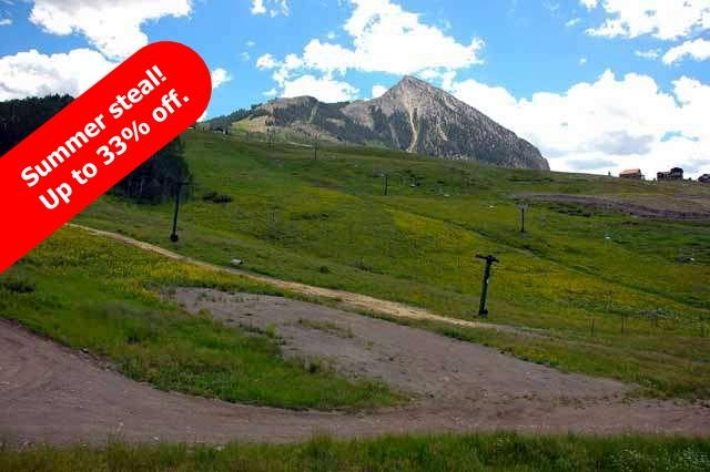 Slopeside wildflowers, sleeps 2-8. Great for families! - Image 1 - Crested Butte - rentals