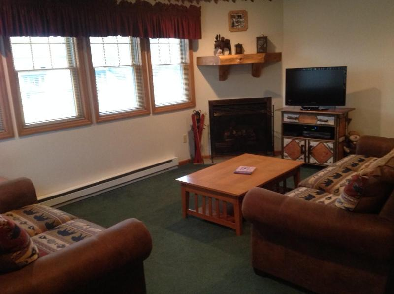Living Room - Lake Placid, NY Town House - 4 Bedroom 3 Bath - Lake Placid - rentals