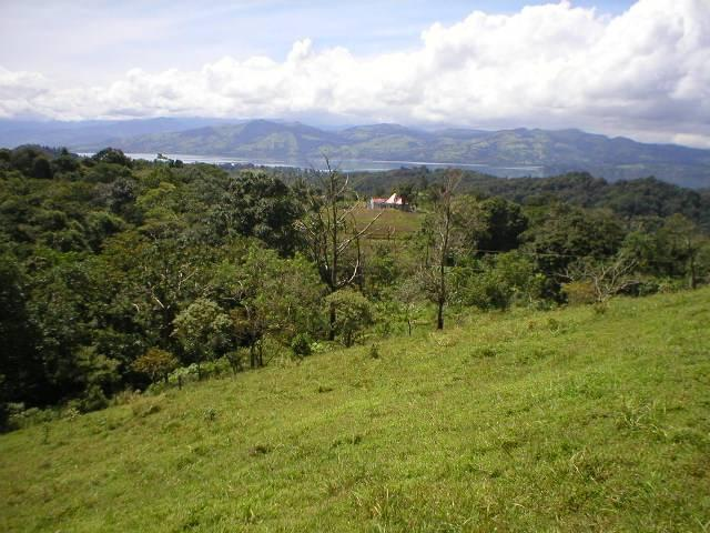 Jungle forrest and lake view - Studio Apartment / Cabina with perfect lake view - Nuevo Arenal - rentals