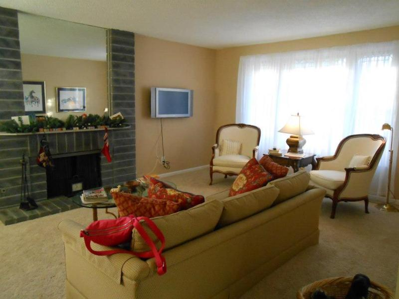 Living Room - Family friendly, wifi, close to highway and strip. - Las Vegas - rentals
