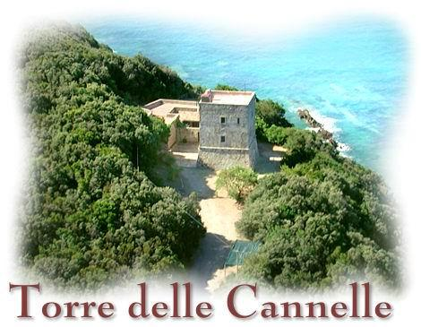 aerial view - CHARMING VILLA, SEAFRONT WITH PRIVATE BEACH ACCES - Talamone - rentals
