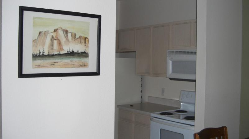 BEAUTIFUL CONDO CLOSE TO CLEARWATER BEACH - Image 1 - Clearwater - rentals
