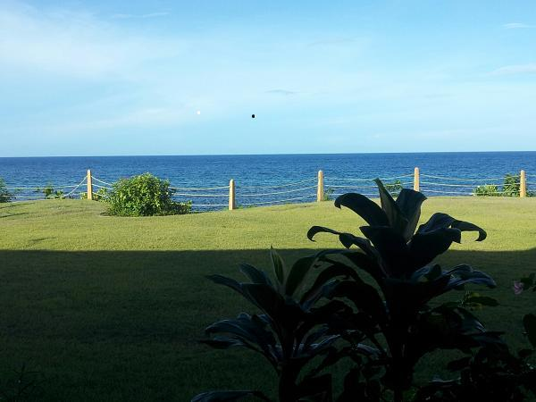 View from Patio - Condo with spectacular Carribean Sea Views - Ocho Rios - rentals