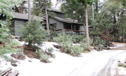 1 Bedroom + loft,1 Bathroom, Sleeps 6, Wifi, Pets Ok: Wood burning fireplace,hiking access,satellite tv, backs to national forest - Cozy Hideaway - Idyllwild - rentals
