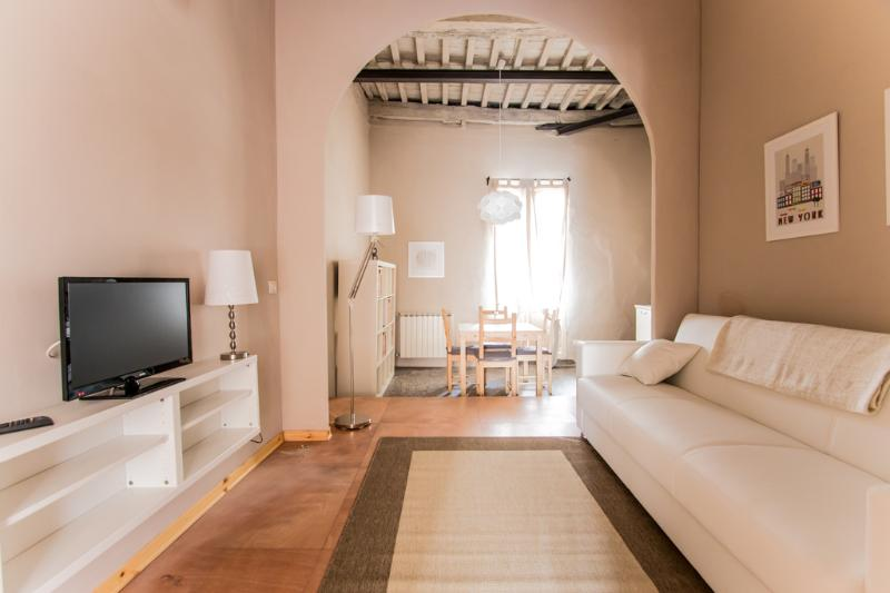 NEW ENTRY Apt with terrace in the heart of town - Image 1 - Lucca - rentals