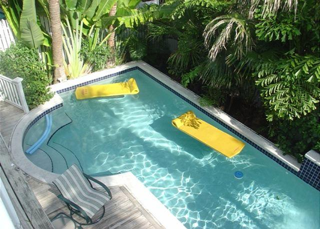Admiral's Paradise - Image 1 - Key West - rentals