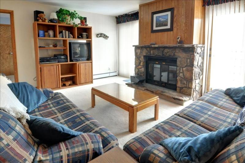BUFFALO VILLAGE 306: 2 Bed/2 Bath, Comfortable & Affordable, Elevator, Clubhouse, Lots of Trails Nearby - Image 1 - Silverthorne - rentals