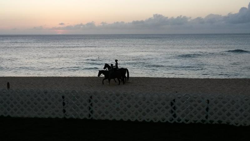 WATCH THE SUNSET WHILE HORSES RIDE BY - Private Beach House - Haleiwa - rentals