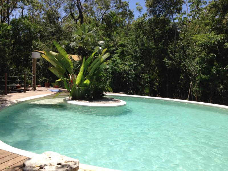 Wide round swimming pool - New House in Tulum: Casa Libelula, Jungle House with pool up to 12 pers. - Tulum - rentals