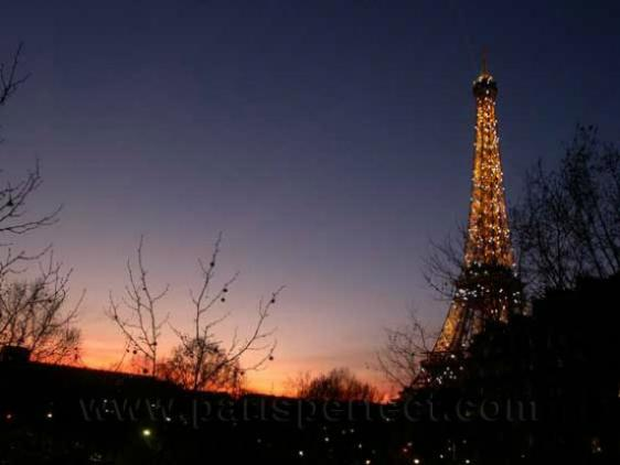 Winter view of the Eiffel Tower from the living room - Eiffel Tower Location! - Paris - rentals