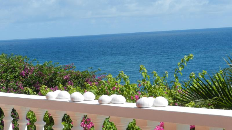 Good morning from Heron's Flight !!! - Heron's Flight -  Holiday Rental with private pool - Westerhall Point - rentals