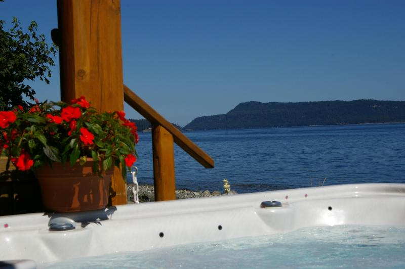 Oceanfront 8 person Hot tub w/stereo and light show - Deluxe Beach Log Home kayaks incl clams/oysters - Qualicum Beach - rentals