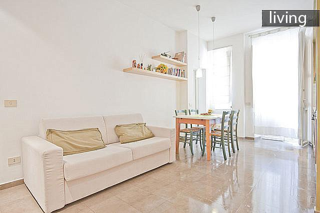 living, bright and comfortable with also a small balcony - Lovely and cheap flat in the central area Appio -S - Rome - rentals