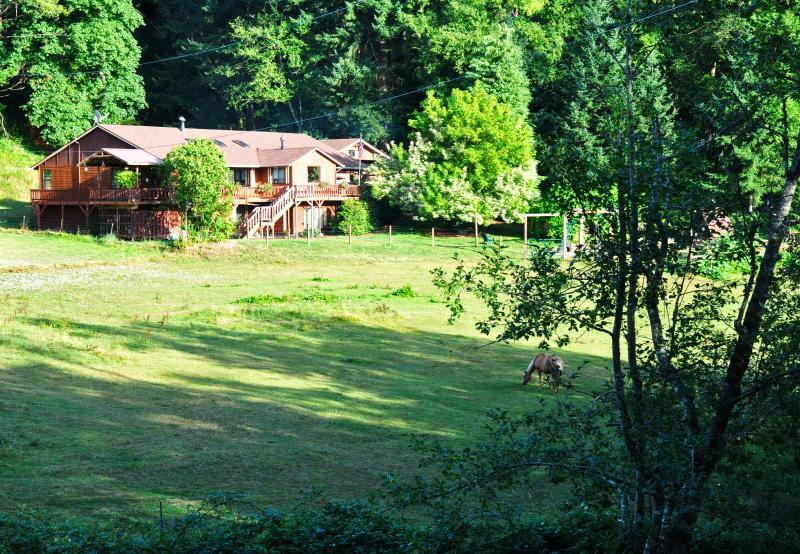 Whole House from the road - Bed and Breakfast - Washougal - rentals