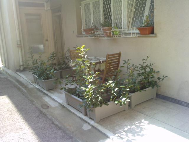 outside - 10mins from Nice beach available August - Nice - rentals