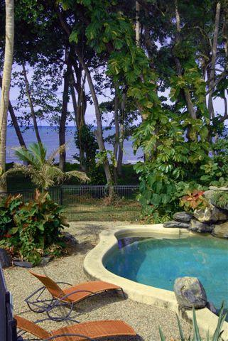 Pool on the beach front - Absolute Beachfront Holiday Home near Port Douglas - Newell Beach - rentals