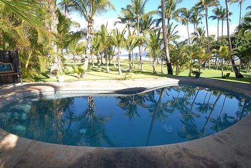 Private Pool with Ocean View.   - Beach House with Private Pool & A/C - Kihei - rentals
