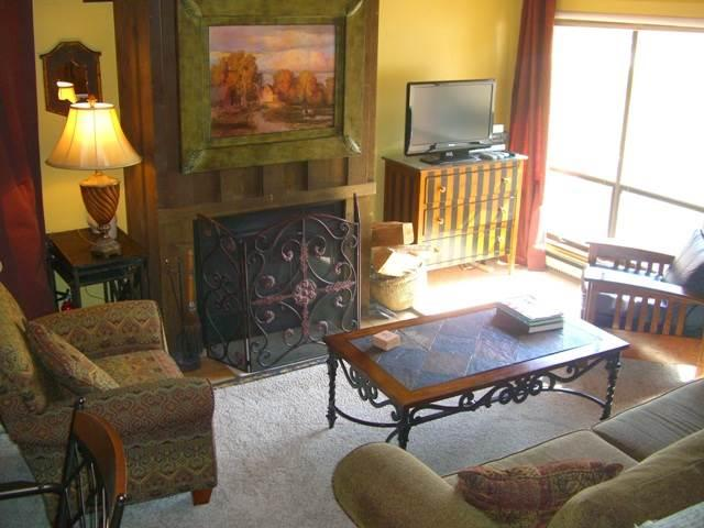 Whetstone #308 - Image 1 - Crested Butte - rentals
