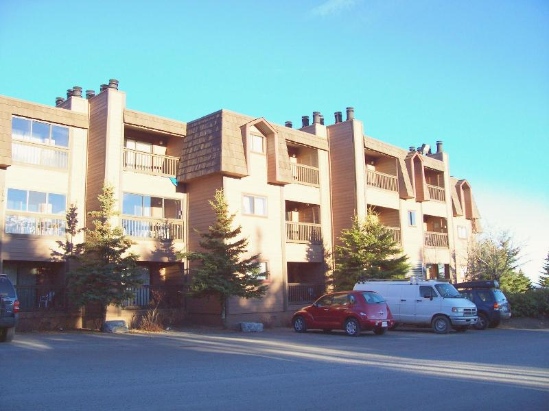Snowcrest Building (condo on third floor) - Snowshoe 1BR Condo - Snowshoe - rentals
