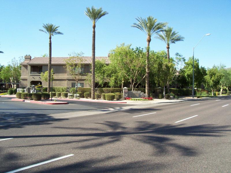 Palm tree lined entrance to Villages North gated community - Great Value - 2 BR Condo Scottsdale, AZ - Scottsdale - rentals