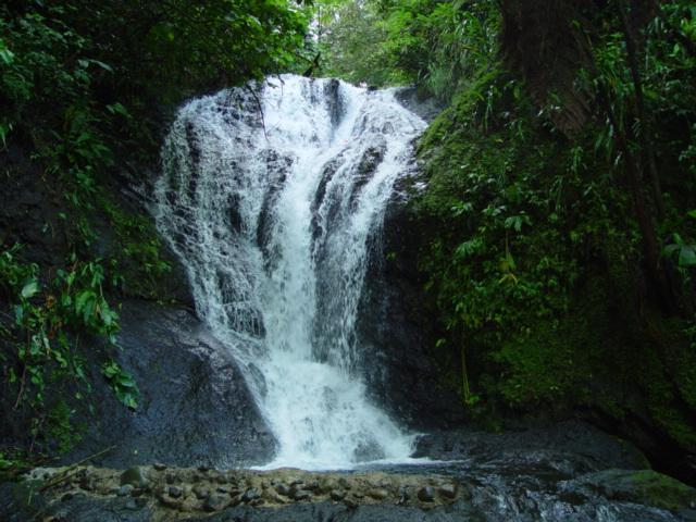 Waterfall Everywhere - Award Winning Tropical Paradise Just Check Our Reviews & See Why! - Manuel Antonio - rentals