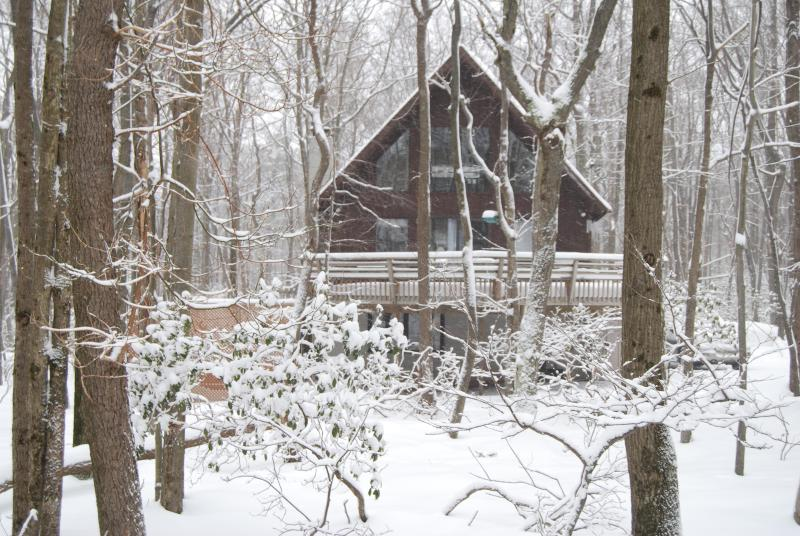 Winter Wonder Land - The Best Spot in the Poconos, COzy Mountain Chalet - Lake Harmony - rentals