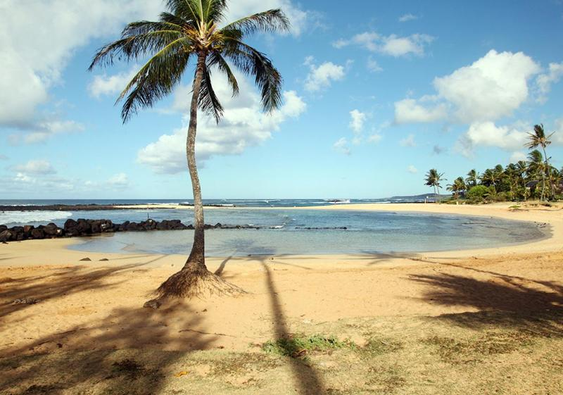 A 5 minute walk to Poipu Beach Park - walk to Poipu Beach from Pua Hale -Deluxe  home - Poipu - rentals