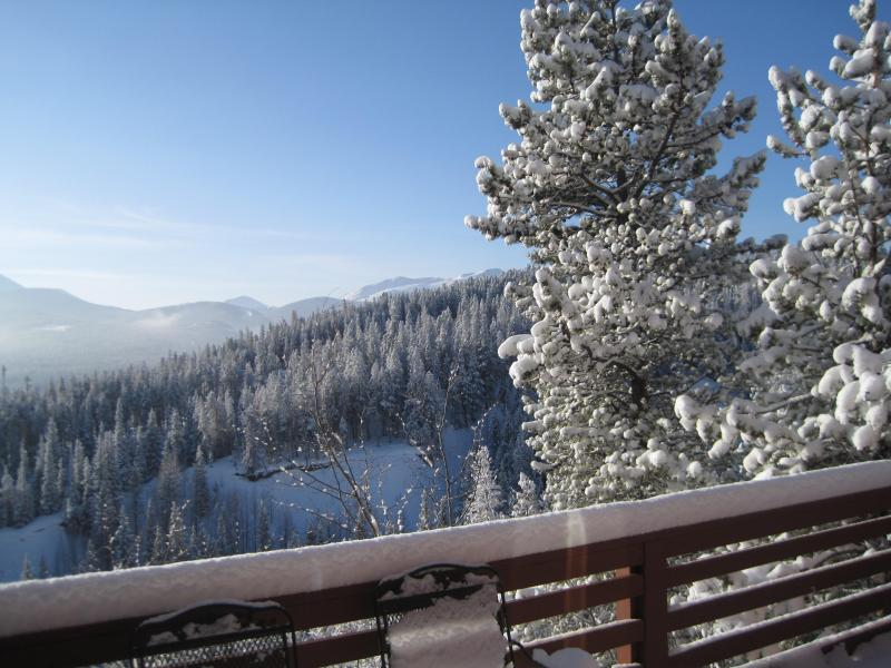 Beautiful Bluebird Snow Day!! - The Snow is Falling!! Book Before We Fill Up!! - Breckenridge - rentals