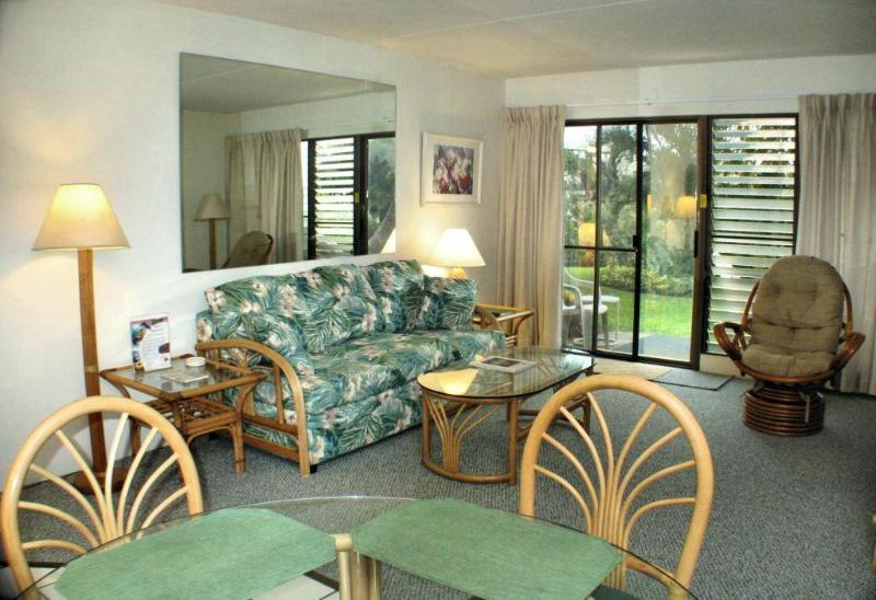 Updated Comfortable Living Room w/queen Sofabed - Kihei Akahi DG07-  Updated and Affordable - w/Air - Kihei - rentals