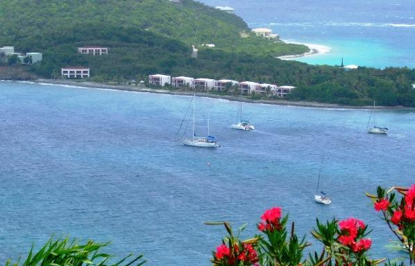 From Across Red Hook Harbour - Caribbean Paradise - Cabrita Point - rentals