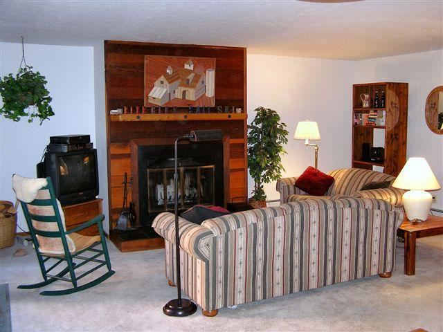 cozy living room with wood burning fireplace (wood provided) - Charming condo in Timber Ridge on Buffalo Mountain - Silverthorne - rentals