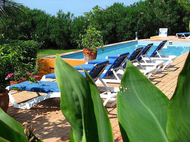 Marblue Verandah Villa Pool - MARBLUE. the Collection - private Beachfront Villa - Treasure Beach - rentals