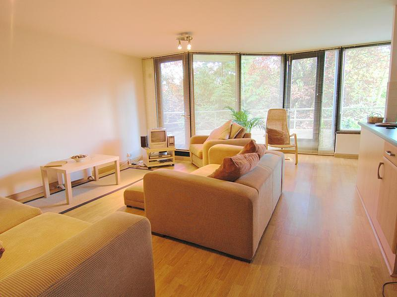 The light and spacious living area - Lovely two bedroom apartment in North Oxford - Oxford - rentals