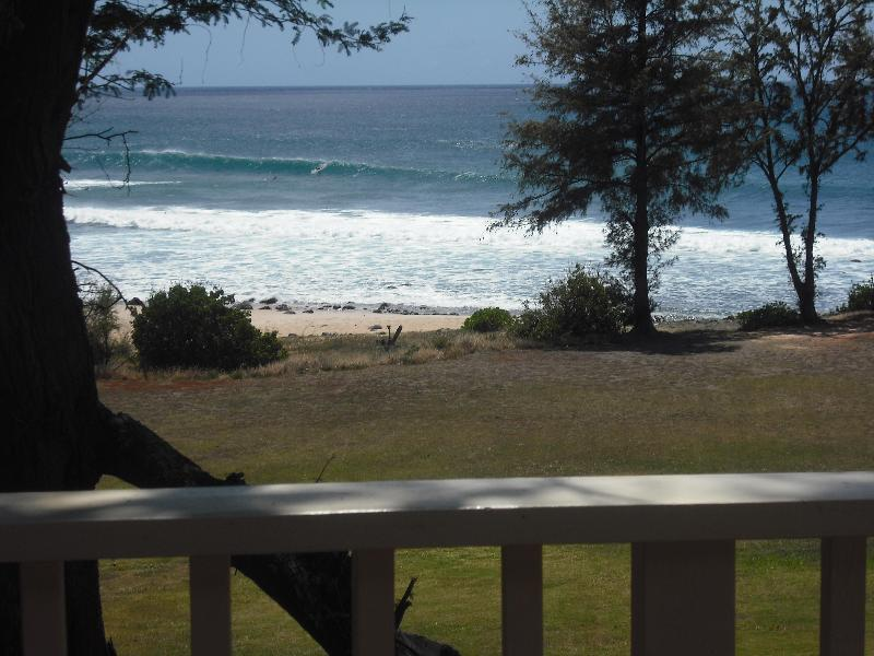 Your just steps away from several beautiful secluded beaches - Oceanfront  2 Bd/2 Bth Paniolo Hale G2 - Maunaloa - rentals