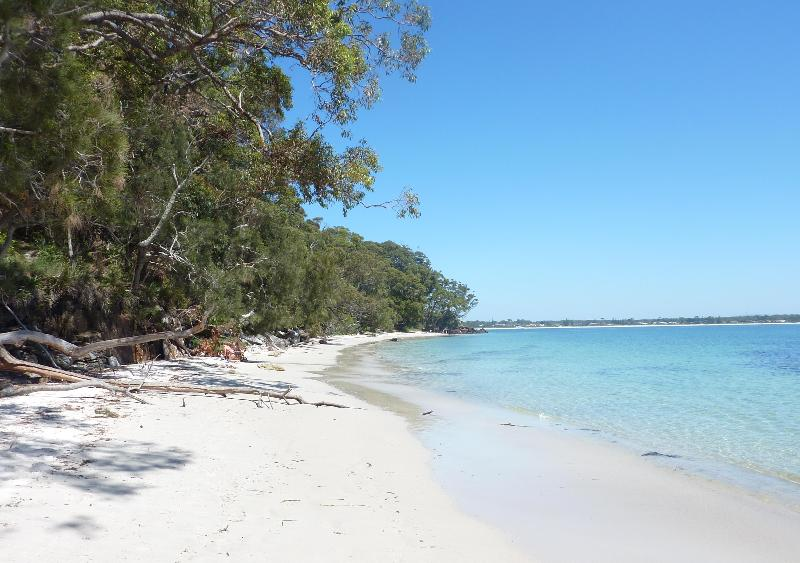 Orion Beach - opposite house - JERVIS BAY BEACH HOUSE, NSW, SOUTH COAST - Vincentia - rentals