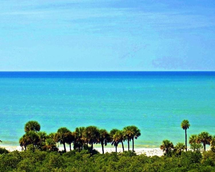 View from lanai - Penthouse on the Gulf of Mexico - Naples - rentals