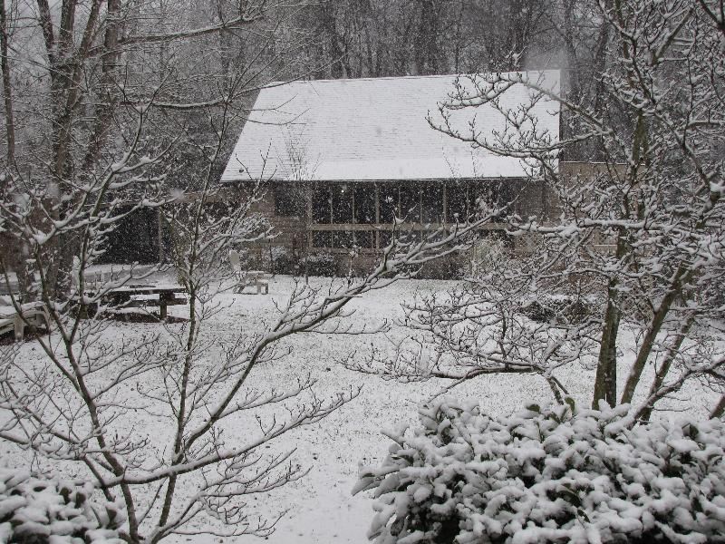 Winter Day at Southwind Cabin - Southwind Cabin near downtown Chattanooga, TN - Chattanooga - rentals