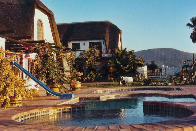 View of chalet from the pool - Enchanted Garden Self Catering Cape Town Noordhoek - Cape Town - rentals