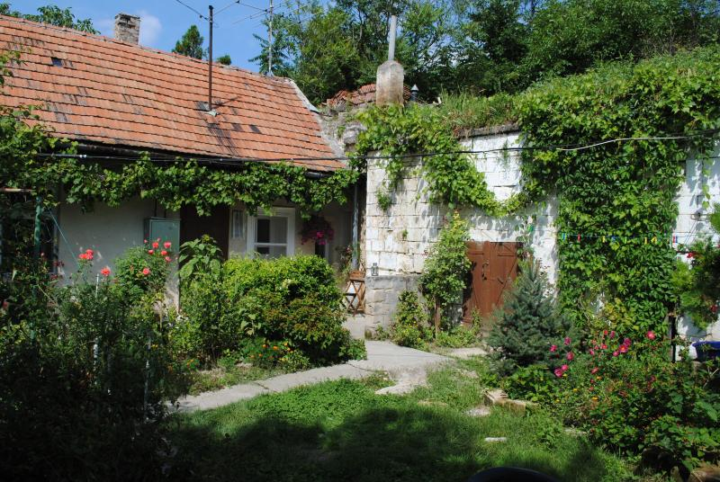 The house - Rural Countryside Cottage near Budapest - Budapest - rentals