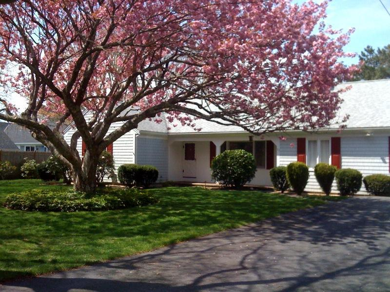 Exterior - Gateway Isles Oasis - Your Gateway to the Cape! - South Yarmouth - rentals